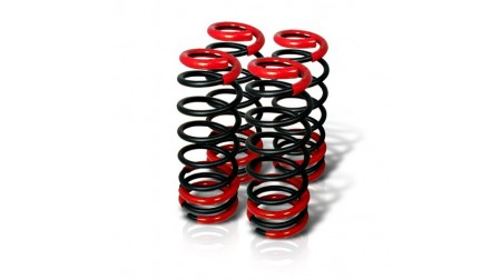 Kit de drop Honda Civic 1992-00 Spec-d tuning
